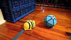 BeeBot Box Tango Dance - YouTube