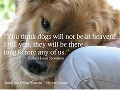 Divine Quotes ~ Animals and Nature | We Heart It