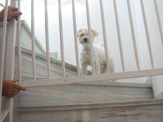 Cómo poner una barandilla en la escalera