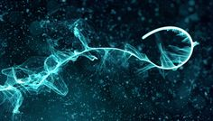 Download AE, Trapcode Particular Project file: Particle Experiments   CG Daily news
