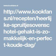 http://www.kookfans.nl/recepten/heerlijke-spruitjesovenschotel-gehakt-is-zo-makkelijk-en-perfect-koude-dag/