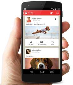 """Dogalize: una """"APP social network"""" dedicata agli amici a quattro zampe e ai loro proprietari, che potranno così ricercare locali dog-friendly, negozi specializzati, etc."""