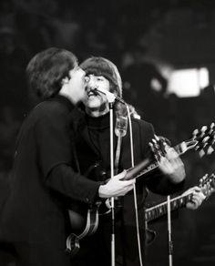 i fancy the sixties The Beatles Live, Les Beatles, John Paul, Is 11, Paul Mccartney, Ants, Culture, Concert, Ant