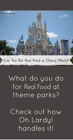 Can You Eat Healthy Food at Disney World? - Oh Lardy :: Want all the Oh Lardy awesomeness delivered right to your inbox?  Grab our newsletter here: https://il313.infusionsoft.com/app/form/d0d7082c8e0308d3bca548dedc511cae