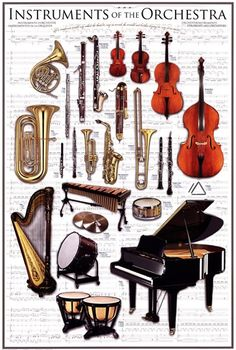 Use this Instruments of the Orchestra poster in your home or classroom to introduce the child to the vocabulary of music. Children love learning new words, and they may want to know more about the instruments after learning their names. Instruments Of The Orchestra, Musical Instruments, Music Rock, Reggae Music, Indie Music, Elementary Music, Music Classroom, Music Theory, Teaching Music