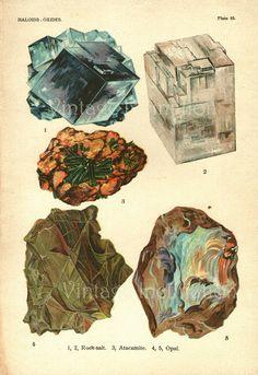 Vintage 1922 Minerals Print Antique Gems Precious Stones print gemstones print, bookplate art print, minerals wall print wall art. $18.50, via Etsy.
