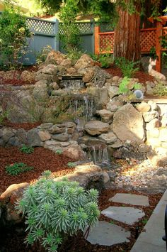 waterfall garden - need to build this to contain what already happens in  my back yard.