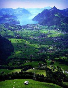 The Alps, Switzerland; where is my alpine rose? ;)