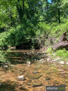 The one-mile Herbert Taylor Park loop trail explores South Fork Peachtree Creek and a tributary  in Atlanta's Morningside neighborhood