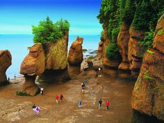 Bay of Fundy, Nova Scotia, Canada. (To get exactly here - Hopewell Rocks- you need to go through New Brunswick!) Tide changes every 6 hours. High and low tide vary by 50 feet, the greatest height in the world. Nova Scotia, Torre Cn, Places To Travel, Places To See, Places Around The World, Around The Worlds, New Brunswick Canada, Saint John New Brunswick, Brunswick Maine