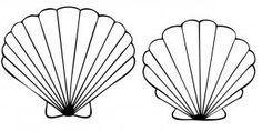 how to draw a seashell, seashells step 4