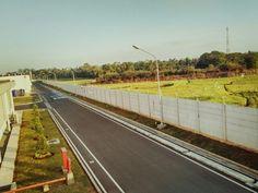 Road & field