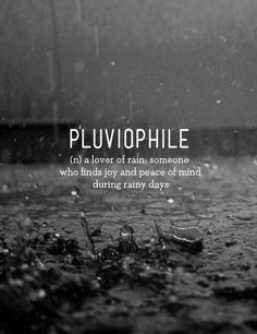 Pluviophile: a lover of rain, someone who finds joy and peace of mind during rainy days