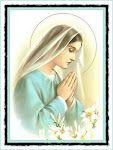 Wear Your Mantilla: Why wear a chapel veil?