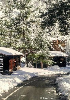 Winter in the mountains Troodos, Cyprus