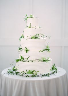 simple white tiered cake with green vines