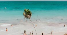Tulum has quickly become the go-to spot for travelers seeking turquoise water, delicious food, and a posh escape from the city life. Ultimate Guide to Tulum