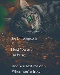 Time chngs everyone…… But not those who really cares for you… Nd love you… Source by Besties Quotes, True Love Quotes, Couple Quotes, Funny Quotes, Bffs, Lost Quotes, Wisdom Quotes, Heart Quotes, Hindi Quotes