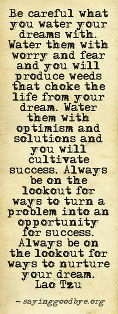 Water your dreams with optimism.. You will cultivate success