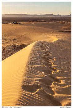 Footprints on a sand dune above camp near Bahariya Oasis, Western Desert, Egypt. Photo Quintin Lake