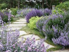 Tvoríme nízkoúdržbovú záhradu