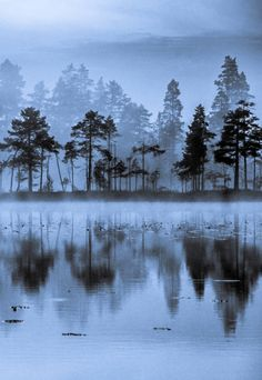 Finnish Lake 4 by Lauri Lohi on 500px
