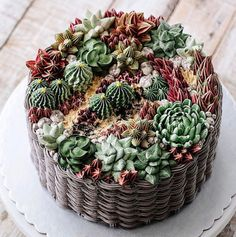 Succulent Cakes by Ivenoven    Delicately grouped together in arrays of bright colours, these buttercream succulents are each unique and delicious as the last. Handmade and sculpted by Ivenoeven, these edible plants are available to purchase or fawn over on her Instagram & Facebook.