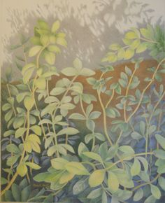 """Advancing Shadows"" Complex vines growing against the house foundation. 20"" x 16"" by Mary K Hyatt  www.marykhyatt.com"