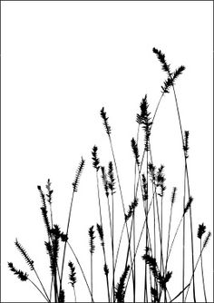 grass vector black silhuette Royalty Free Stock Vector Art Illustration