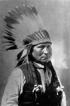 Phenomenal Native American Indian Hairstyles Braids Whorls Scalplocks Short Hairstyles Gunalazisus