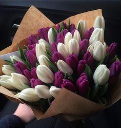 Purple Tulips, Tulips Flowers, Pretty Flowers, Fresh Flowers, Colorful Flowers, Spring Flowers, Planting Flowers, Flower Bouquet Diy, Bouquet Box