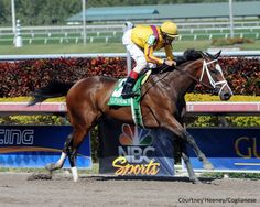 Dreaming Of Julia(2007)A.P. Indy- Dream Rush By Wild Rush. 4x5 To Bold Ruler & Mr Prospector. 8 Starts 4 Wins 2 Seconds 1 Third. $874,500. Won Frizette S(G1), Gulfstream Park Oaks(G2), Meadow Star S, 2nd Mother Goose S(G1), Davona Dale S(G2), 3rd BC Juvenile Fillies(G1).