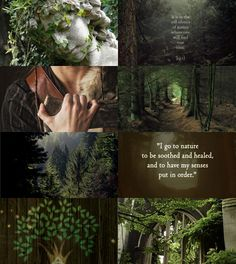 Oath of the Ancients Mood Board