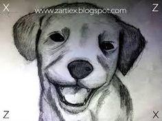 Resultado de imagen para dibujos en lapiz de animales 3d