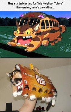 Tonari no Totoro Cosplay alternativo