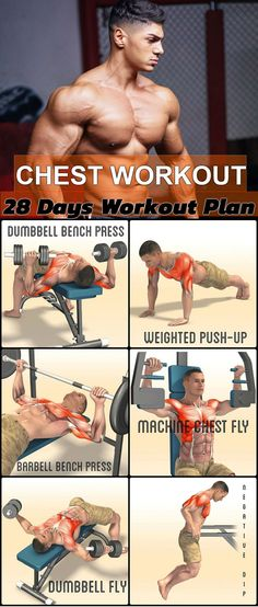 26 Best การบริหารหน้าอก images in 2019 | Chest workouts