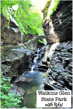 Some of our favorite family road trips have been to New York state parks, and visiting Watkins Glen State Park with kids, located in the Finger Lakes region of New York, is right at the top of our list for beauty! Ny Parks, New York State Parks, Family Road Trips, Family Travel, Summer Vacation Spots, Vacation Ideas, Watkins Glen State Park, Road Trip Destinations, Lake George