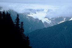 hike- High Divide trail, Olympic National Park - WA Distance: an 18 mile loop on excellent trails Western Washington, Washington State, Port Angeles Washington, Mount Olympus, Olympic Peninsula, Day Hike, Hiking Trails, Pacific Northwest, Late Summer