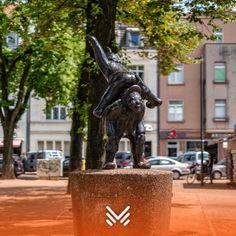 Immobilienmakler Köln Vogelsang - MetaFeld Immobilien | Stadtbezirk ...