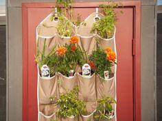 Vertical Hanging Garden from CookingChannelTV.com