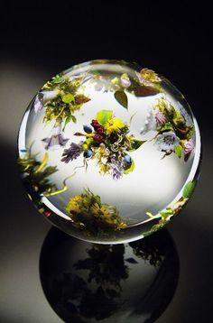 Something quite interesting...The work of legendary glass artist Paul Joseph Stankard.