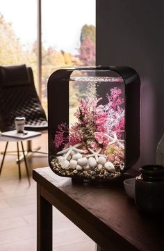 You will love the decoration with biOrb LIFE from Oase! How To Aquarium Fisheries? Betta Fish Tank, Aquarium Fish Tank, Aquarium House, Biorb Fish Tank, Tropical Fish Aquarium, Saltwater Aquarium, Freshwater Aquarium, Aquarium Design, Conception Aquarium