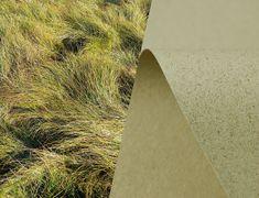 Meet SH Recycling Grass & Kaffee Papier Recycelt: a Europapier Story about Sustainability
