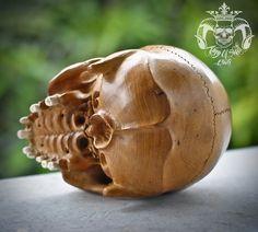 Rare One Of Kind Detail Live Size Carved Old Jackfruit Wood Human Skull No Jaw