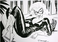 Darwyn Cooke's Black Cat