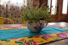 Plantinhas dentro de casa