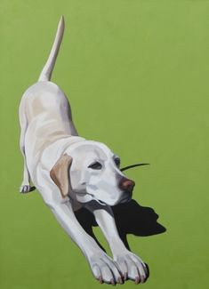 Cristall Harper Art - Down Dog