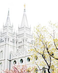 Salt Lake Temple - and no where else.