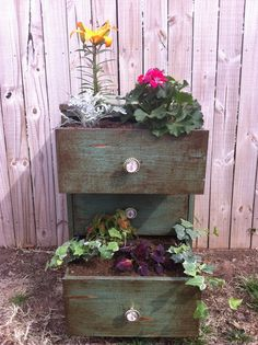Old chest made into planter. Love it.