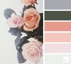 Rose Tones | Design Seeds